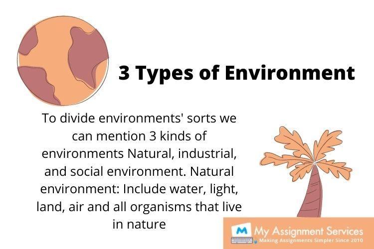Environmental studies dissertation help