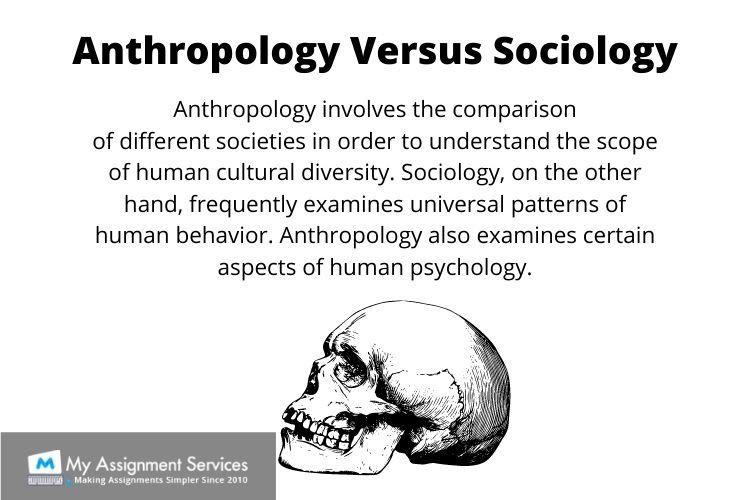 Anthropology dissertation help