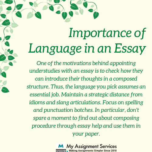 Language in an Essay
