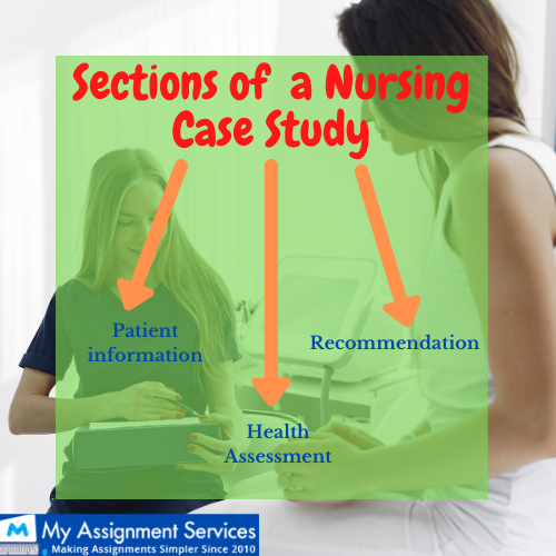 sections of a nursing case study