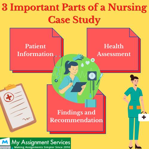 Important parts of nursing case study