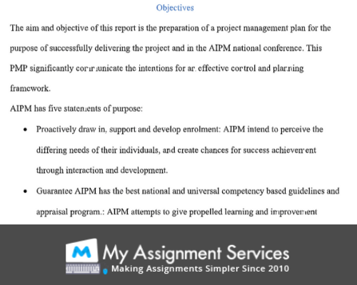 Project plan assignment help