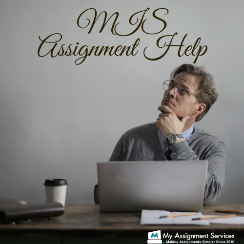 MIS assignment help