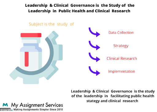 Leadership and clinical governance dissertations help service