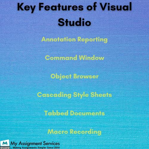 visual studio dissertation experts