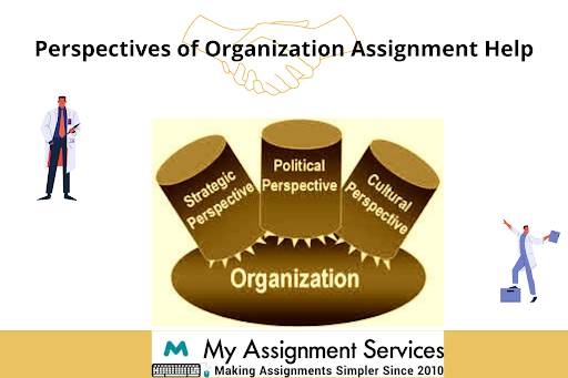 Perspectives of Organization assignment help