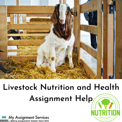 Livestock Nutrition and Health assignment help