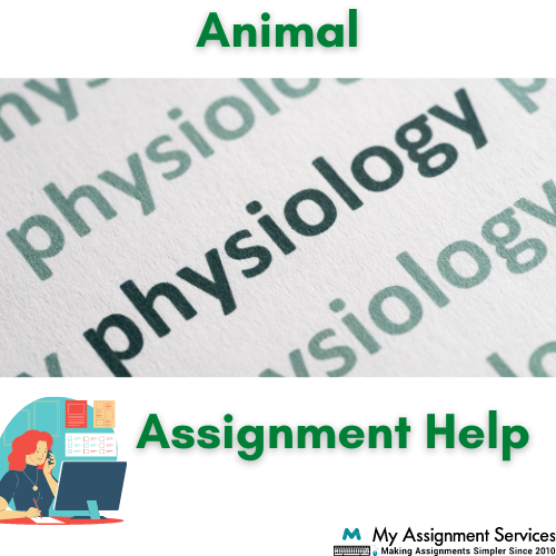 physiology assignment help