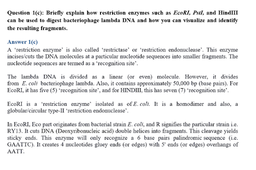 molecular medicine dissertation experts