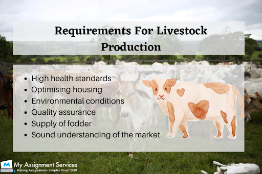 Livestock Production Systems Dissertation Help