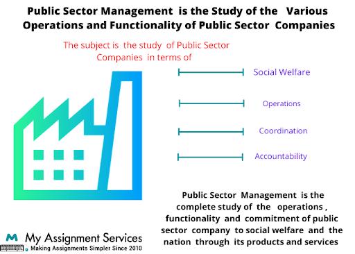 Public Sector Management homework  help