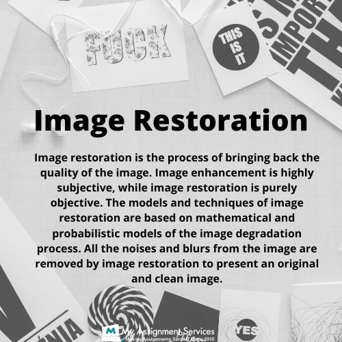 Image Processing Dissertation Help