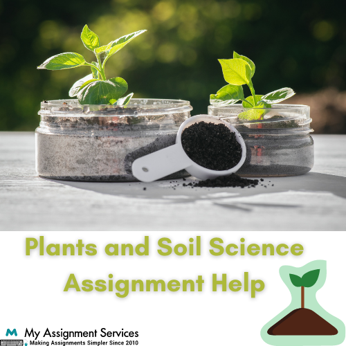 plant and soil science assignment help
