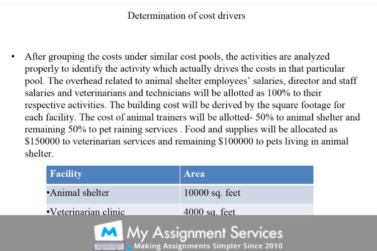 Animal Adaptations 4