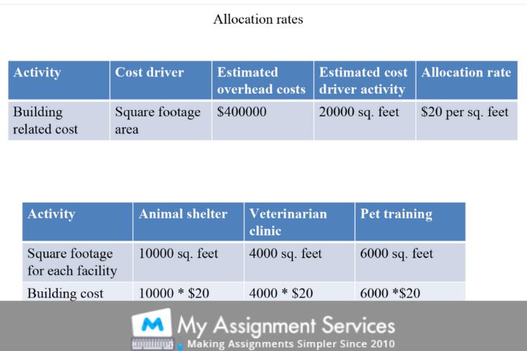 Animal Adaptations 5