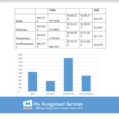Best Web Analytics assignment help