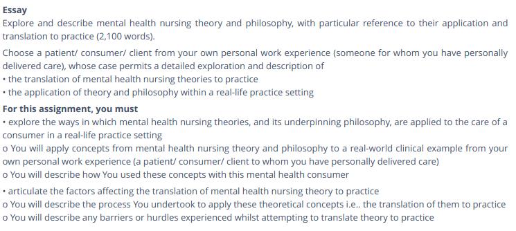 nursing theory assignment help