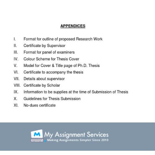 dissertation appendix