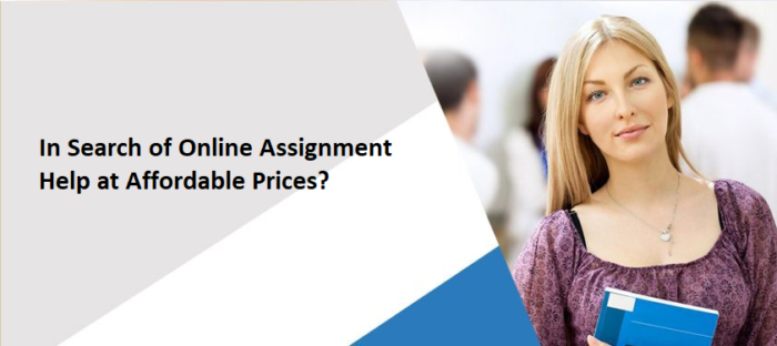 In Search of Online Assignment Help at Affordable Prices?
