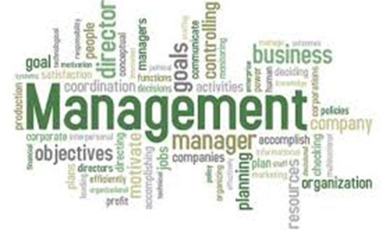 Management Dissertation Experts