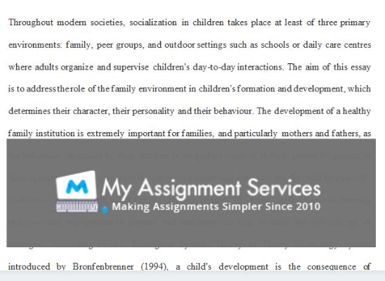 english essay assessment sample