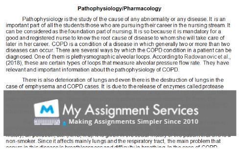university nursing coursework assessment answer sample2
